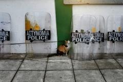 Police Broke into Athens Metro Depot / Επέμβαση Αστυνομίας στο Αμαξοστάσιο του Μετρό